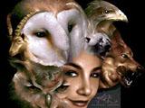 Animal Reign